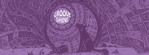 Grooveshine