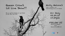 Queen_Crow_5-30-15
